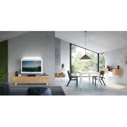 Modulo TV AXT-2