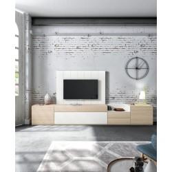 Modulo TV AXT-4